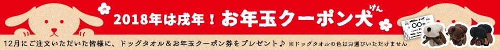 2018お年玉クーポン券キャンペーン