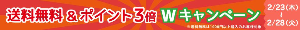 Wキャンペーン 送料無料&ポイント3倍