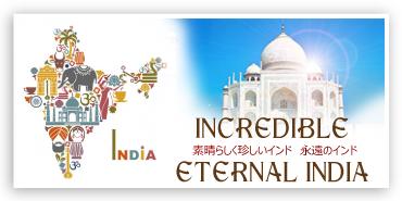 素晴らしく珍しいインド そして永遠のインド