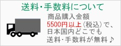購入金額が5500円以上(税込)で国内どこでも送料・手数料が無料!