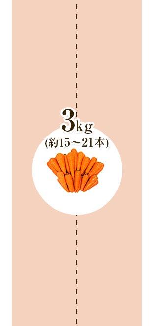 にんじん3kg_2