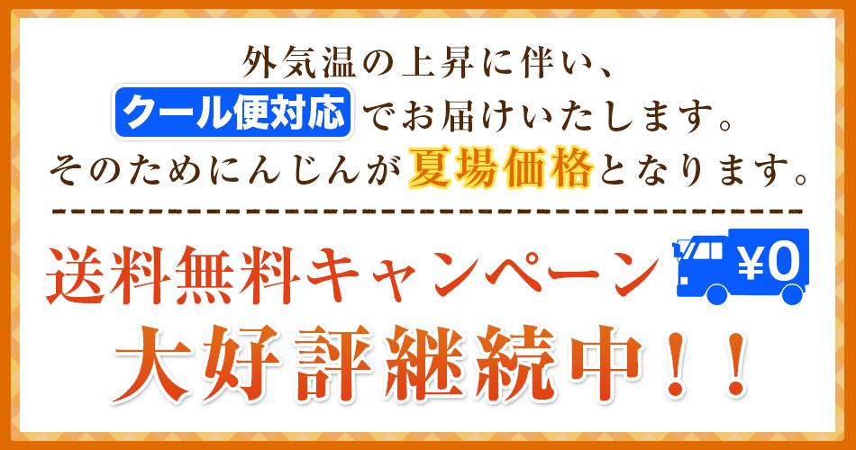 送料無料キャンぺーン開催中!