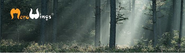 メロウィングス mero wings forest collection フォレストコレクション フォレスト コレクション ウッド wood 丸太 クッション 木 インテリア