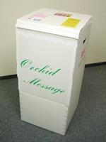 胡蝶蘭の梱包開封の手順:ステップ1