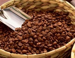 製茶・コーヒー・紅茶イメージ
