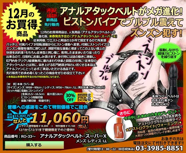 12月のお買得商品・金属製貞操帯(ワーム)