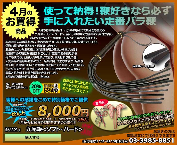 九尾鞭<ソフト・ハード>