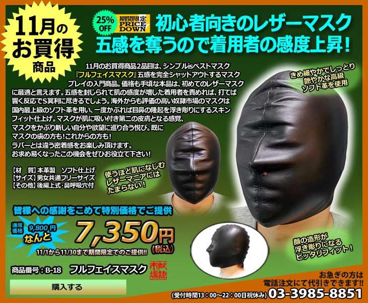 11月のお買得商品・フルフェイスマスク