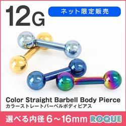12G ストレートバーベル カラー 定番 シンプル