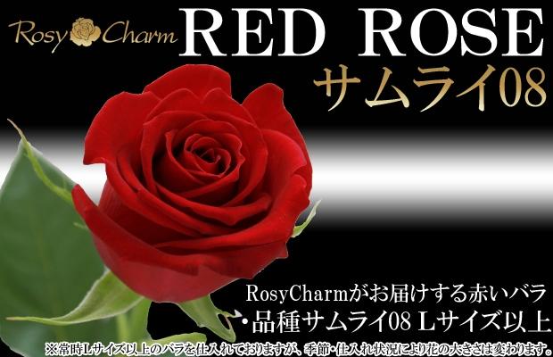 高級バラ 赤 サムライ08