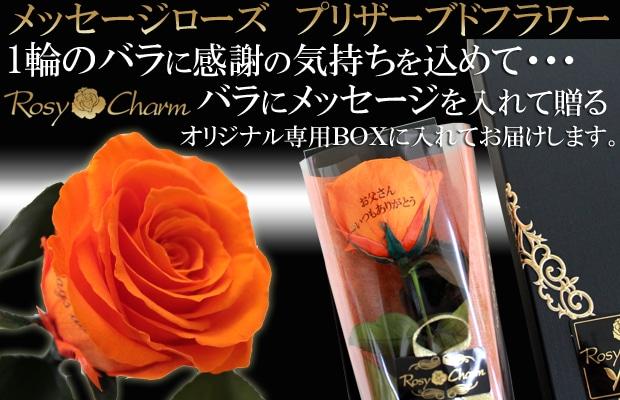 1輪のバラ メッセージ入り オレンジ