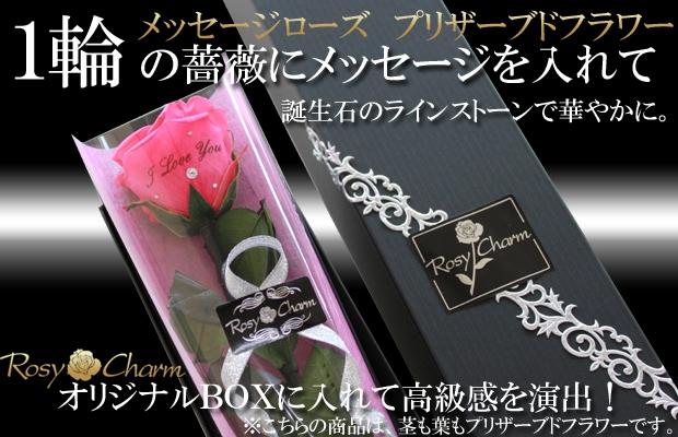 メッセージフラワー ホットピンクのバラ