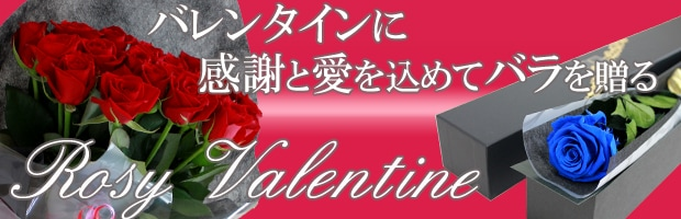 バレンタインに贈るバラ