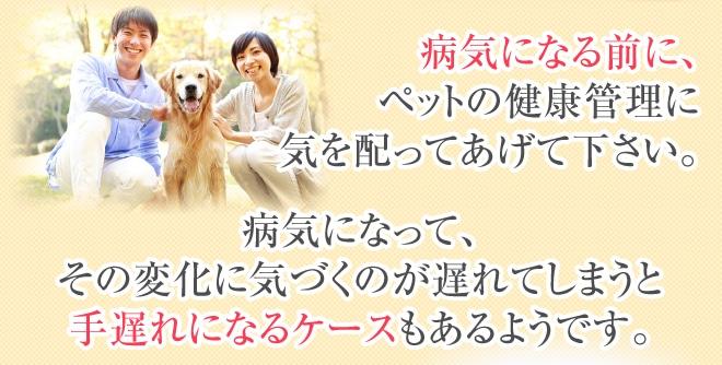 病気になる前に、ペットの健康管理に気を配ってあげて下さい。