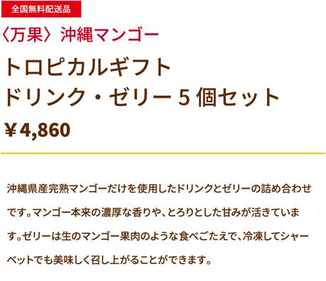 沖縄マンゴー トロピカルギフト ドリンク・ゼリー5個セット