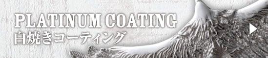 PLATINUM COATING