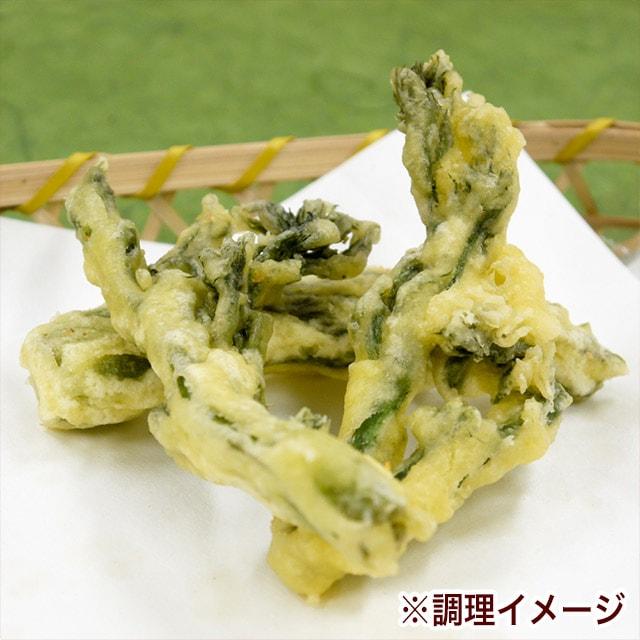 たらの芽 天ぷら 山菜の王様 飛騨産 春の山菜