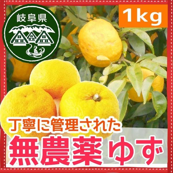 無農薬ゆず 岐阜県産 爽やかな香り 無農薬だから皮まで使える