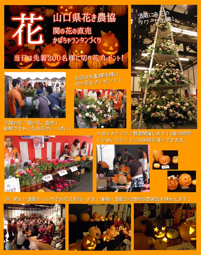 山口県花卉農協の関の花