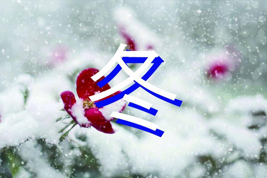 f冬のおせんべい