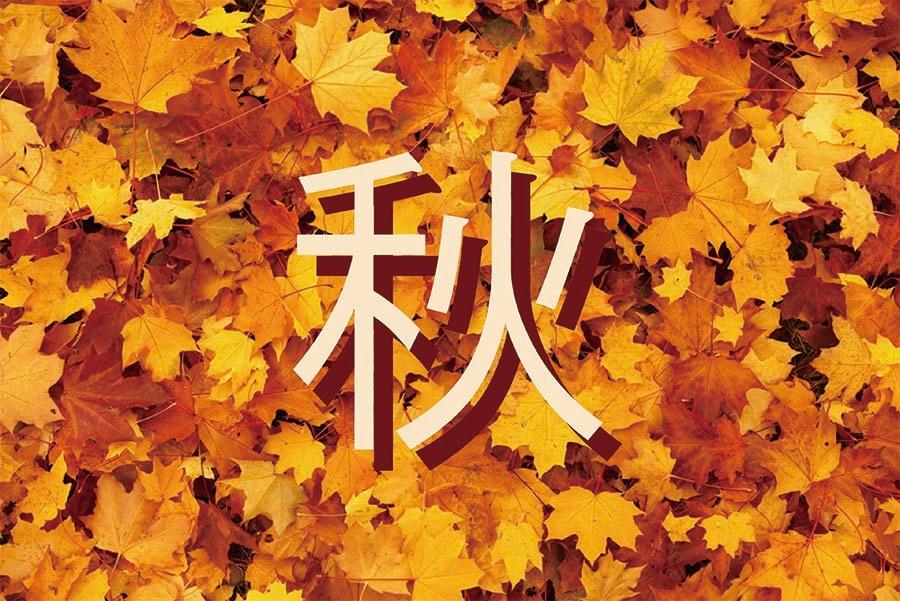 秋のおせんべい