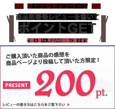 ご購入いただいた商品の感想を商品ページより投稿していただいた方限定!500ポイントプレゼント