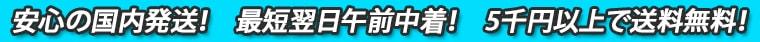 安心の国内発送と最短翌日午前中着さらに5千円以上で送料無料!