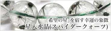 「希望の星」を宿す幸運の象徴