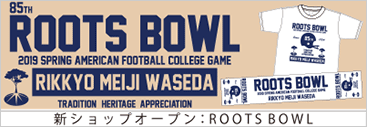 ROOTS BOWL
