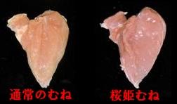 桜姫のムネ肉