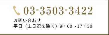 03-3503-3422 お問い合わせ平日(土日祝を除く)9:00〜17:30