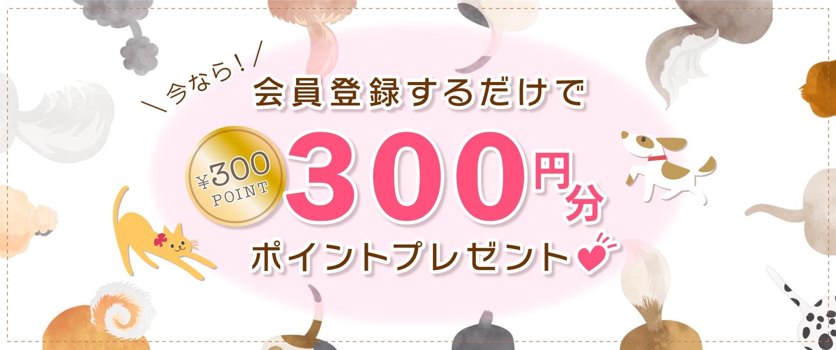会員登録300ポイントプレゼント