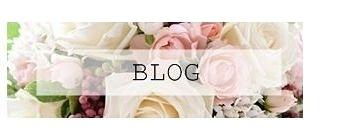 ShopOwner'sBlog新作情報をキャッチアップ!