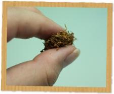 パイプにつめる煙草の量のめやす