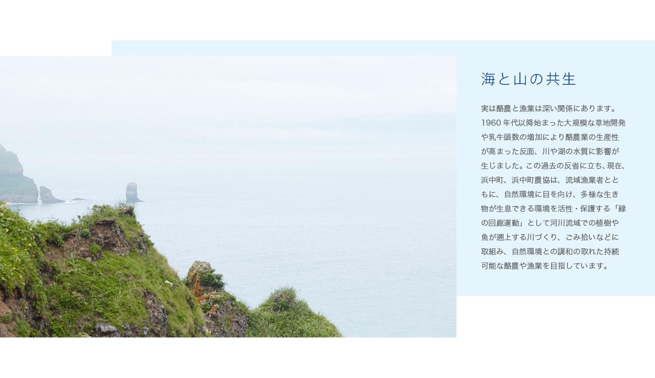 海と山の共生