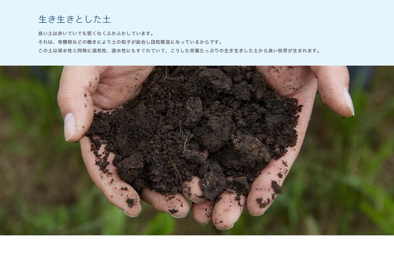 生きている土