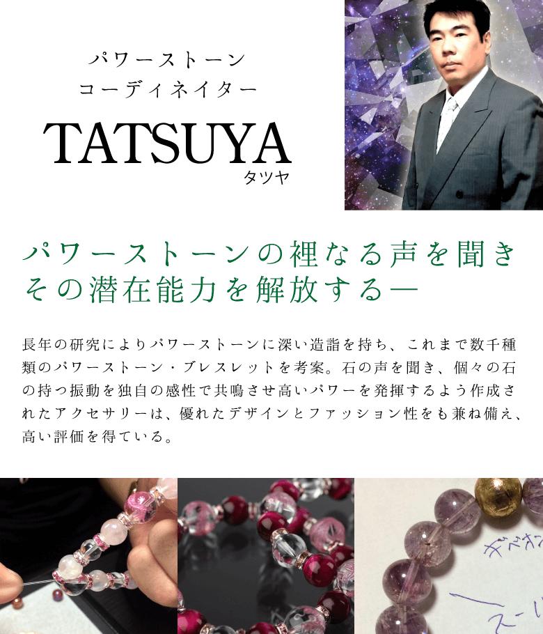 TATSUYAの説明〜