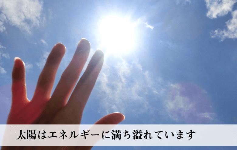 聖甲虫スカラベ Lの説明〜