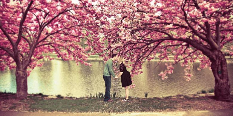 桜咲く春財布の説明〜女性ために誕生し