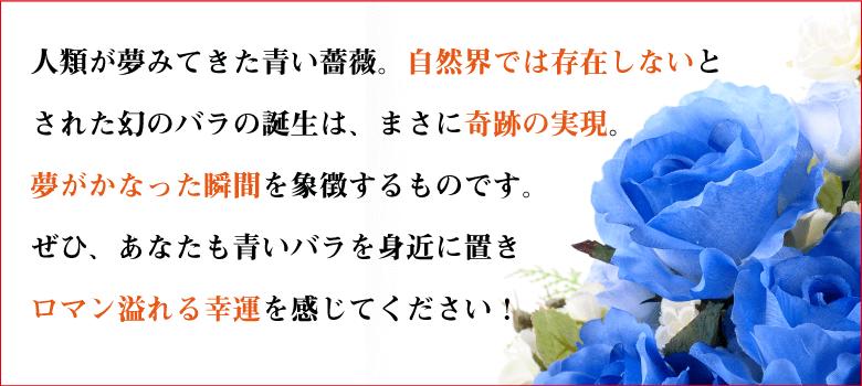 幸運の青いバラの説明〜