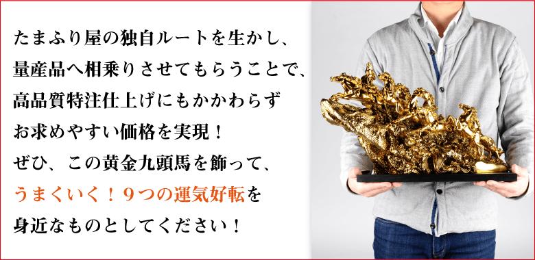 九大昇運『黄金九頭馬』の説明〜