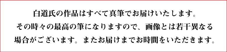 白銀の一筆龍の説明〜