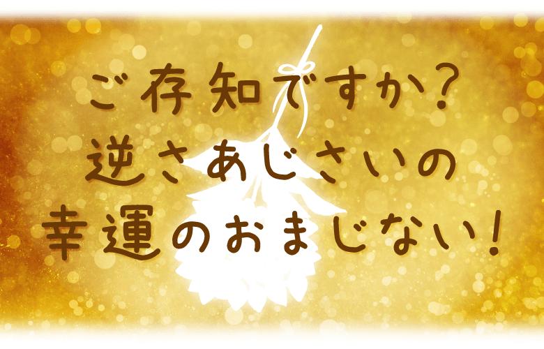 開運アイテム | RIEの『幸福の逆さあじさい』のご紹介