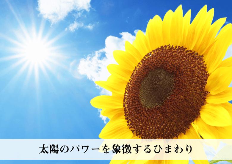 RIEの『幸せのひまわり』の説明〜太陽のパワーを宿