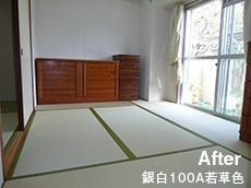 After 銀白100A若草色