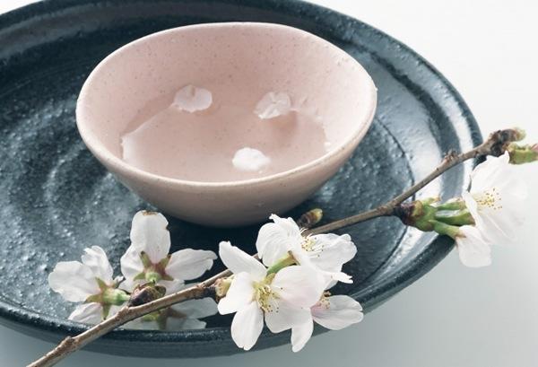 桜とお猪口