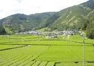 日本人の落ち着く風景と、そこにある和室