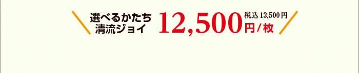 選べるかたち清流ジョイ12500円/枚