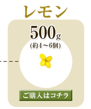 レモン500g