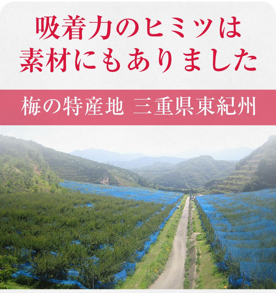 梅の特産地 三重県東紀州の梅を使用
